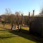 Aussicht vom Balkon (Februar)